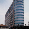 "<div><b>BSG Office Building</b>, Central Jakarta</div><div style=""font-weight: normal;"">Vibration analysis and seismic assessment of the existing tower</div>"
